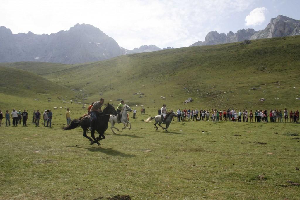 Carrera caballos en la salud 2011