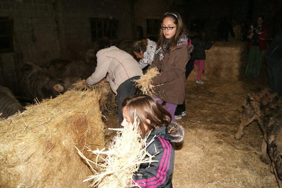 Fin de semana con experiencia rural ganadera
