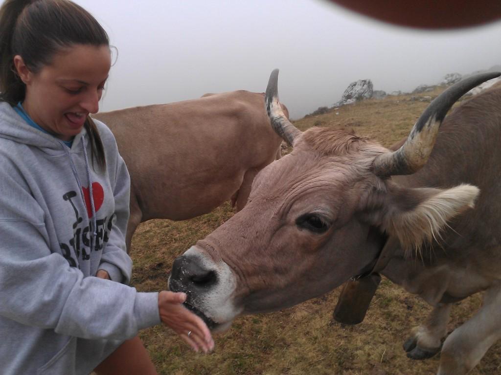 Experiencia rural ganadera en Picos de Europa